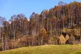 Autumn landscape in the mountains with stack of hay. Traditional hay stacks, typical rural scene of Romania.  - 227989562