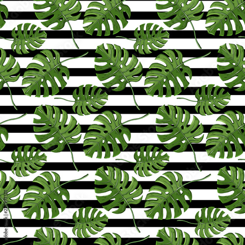 Leaves plant monstera seamless pattern on a striped balck © AldanNa