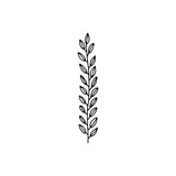 plant twig with leaves stem icon. sketch isolated object