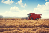 Combine harvester agriculture machine harvesting golden ripe wheat field - 228000972