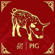 Year of the pig, happy chinese new year, pig illustration