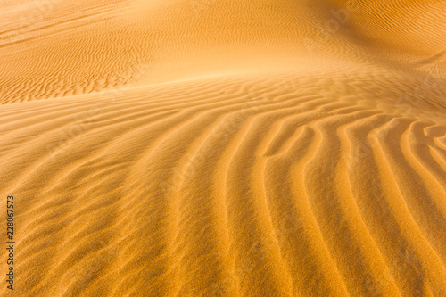 detail of sand dunes in the desert © Ioan Panaite