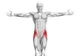 Conceptual hip human anatomy with red hot spot inflammation articular joint pain for leg health care therapy or sport muscle concepts. 3D illustration man arthritis or bone sore osteoporosis disease - 228086542