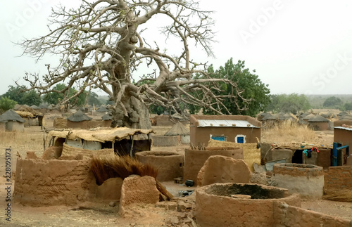 Burkina Faso, siedliska, drzewa zwierząt, przyprawy, jezioro, Afryka