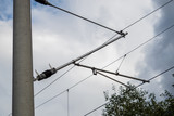 Electric overhead line of a railway