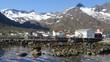 Quadro Norway. Senja island. village The Mefjord