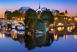 Beautiful view of Ile de la Cite and Pont Neuf at sunrise in Paris, France, as seen from Pont des Arts