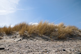 sand dune with dry marram grass (Ammophila arenaria) against a blue sky on the beach of the Baltic Sea, copy space - 228158796