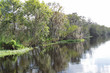 Scenic view along St John's River Florida