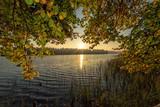 Natural autumn frame - morning lake - 228179158