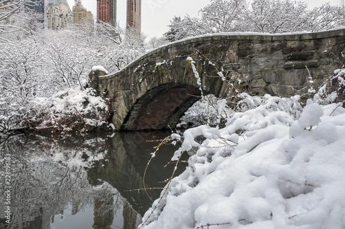 Fototapeta Gapstow Bridge in winter