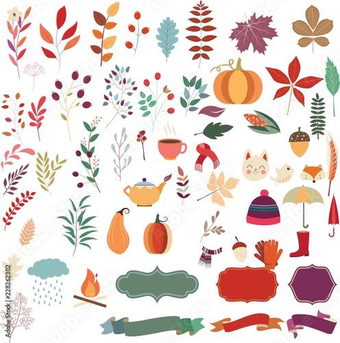 autumn elements - 228262302