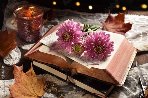 vintage style still life with opened book and flowers © teressa