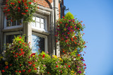 Colorful flower pots hanging outside a classical style brick building with bright blue sky