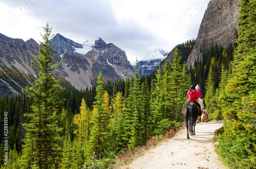 秋のカナディアンロッキー レイク・アグネス・トレイルでの乗馬 レイク・ルイーズ周辺(バンフ国立公園 カナダ・アルバータ州)