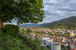 Freiburg, Germany - 228319956