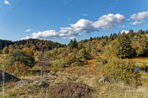 Les Vosges en automne