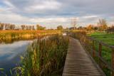 Lake Zgorzala in district Ursynow at autumn, Warsaw, Poland