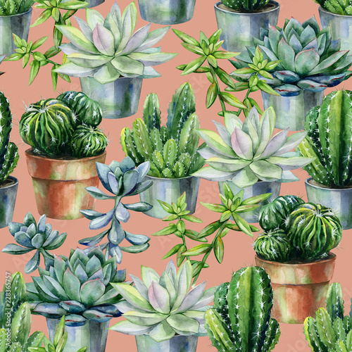 Seamless watercolor pattern with cactus and succulents in pots. Cacti and stone rose illustration for print, home or garden decoration, wrapping paper, textile or wallpaper. Florarium art.  © annaveroniq