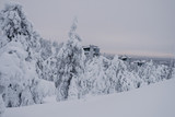 Cottages at the top of winter hill. Finland - 228389915