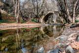 Tzelefos medieval bridge. Cyprus  - 228391348