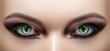 Leinwanddruck Bild - Close-up of Woman Eyes. Halloween Makeup. Cat Eye Lens. Fashion Catwalk Black Make-Up. Luminous Green Cats Eyes