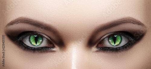 Leinwanddruck Bild Close-up of Woman Eyes. Halloween Makeup. Cat Eye Lens. Fashion Catwalk Black Make-Up. Luminous Green Cats Eyes