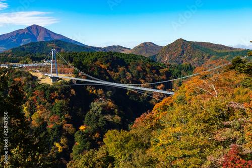 秋の九重夢大吊橋