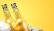 Leinwandbild Motiv Bottles of cold and fresh beer with ice isolated