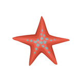 Bright red starfish or sea star with blue spots. Marine creature. Underwater life theme. Flat vector design