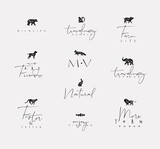 Animals mini floral graphic signs - 228528747