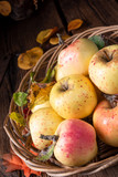 fresh and tasty organic apples in a basket - 228552178