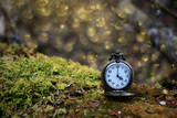 Mystical scene of a brass pocket watch on green moss in a forest