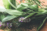 Provence Herbs. Rustic bouquet with salvia, lavender, dill, rosemary