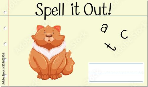 Spell english word cat