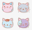 set cats head pet animal