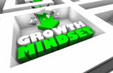 Growth Mindset Increase Success Maze Arrow 3d Illustration - 228618985