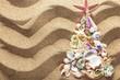 Quadro Fir tree made of sea shells on