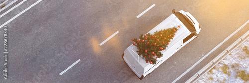 Leinwandbild Motiv Weihnachtsbaum liefern lassen von Lieferservice