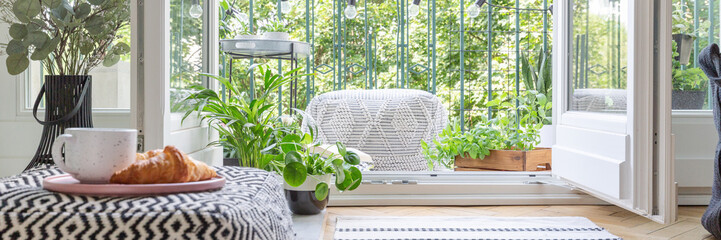 Urban jungle concept kitchen with balcony full of green plant and pouf, real photo, panoramic view © Photographee.eu