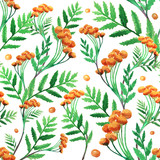 Seamless floral pattern on white background, hand drawn watercolor illustration