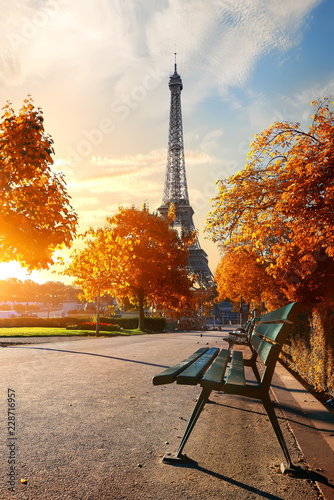 Fototapety, obrazy : Eiffel Tower in autumn