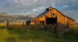 old barn in field - 228717987