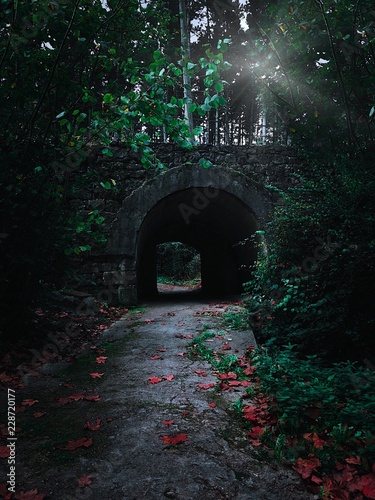 road to the tunnel