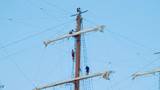 Sailors climbing up and down the masts of a wooden tall ship - 228765789
