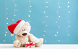 Teddy bear wearing a Santa hat and a gift box on a shiny light blue background