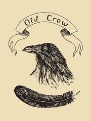 Crow head portrait with black feather and label banner old crow, hand drawn doodle, sketch outline, vector illustration on soft yellow background