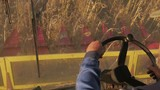 Man driving a combine and harvesting the sunflower. - 228852123
