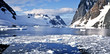 Quadro Antarctica. Lemair Channel