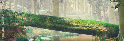 fallen tree, natural bridge in magical forest, beautiful fantasy forest landscape - 228913735
